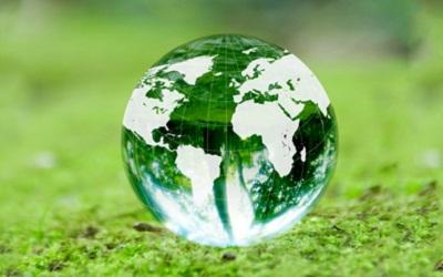 苔の上に置かれた地球を模した水晶玉